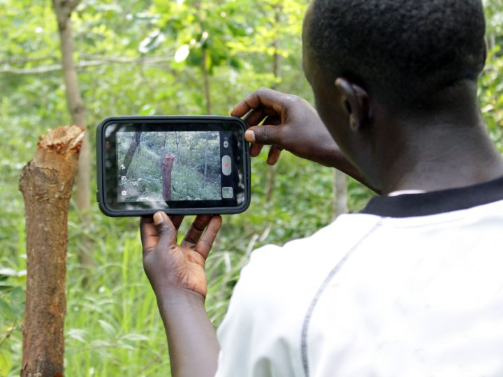 Monitoring Forests & Working with Law Enforcement