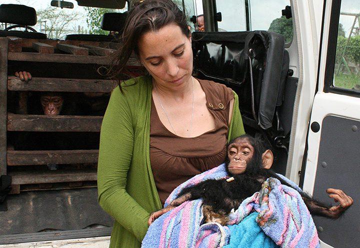 Wildlife Trafficking & Illegal Trade