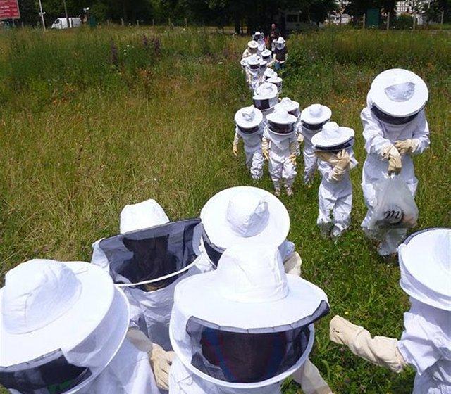 protecting-bees-1b